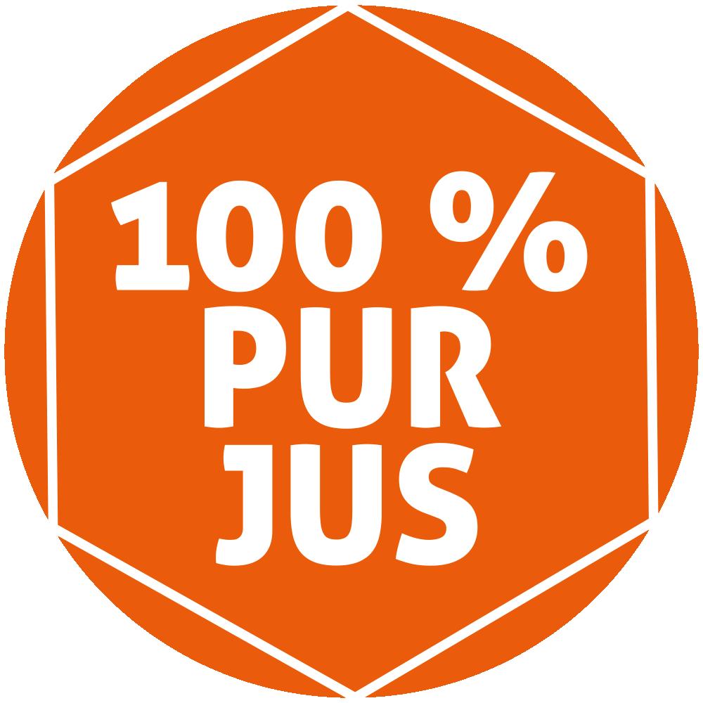 Pur-Jus-LOGO